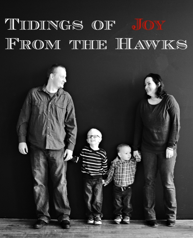 Joyful Tidings From The Hawk Family